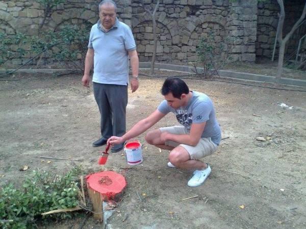 Αιμορραγούν τα δέντρα στην 'πλατεία' Ελευθερίας